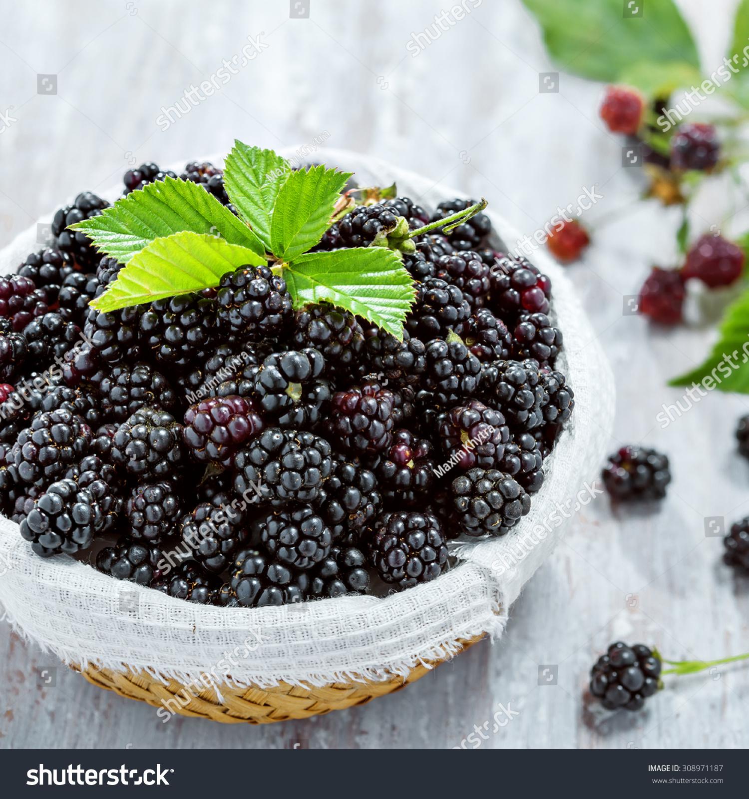 Bowl Of Fresh Blackberries, Top View Stock Photo 308971187