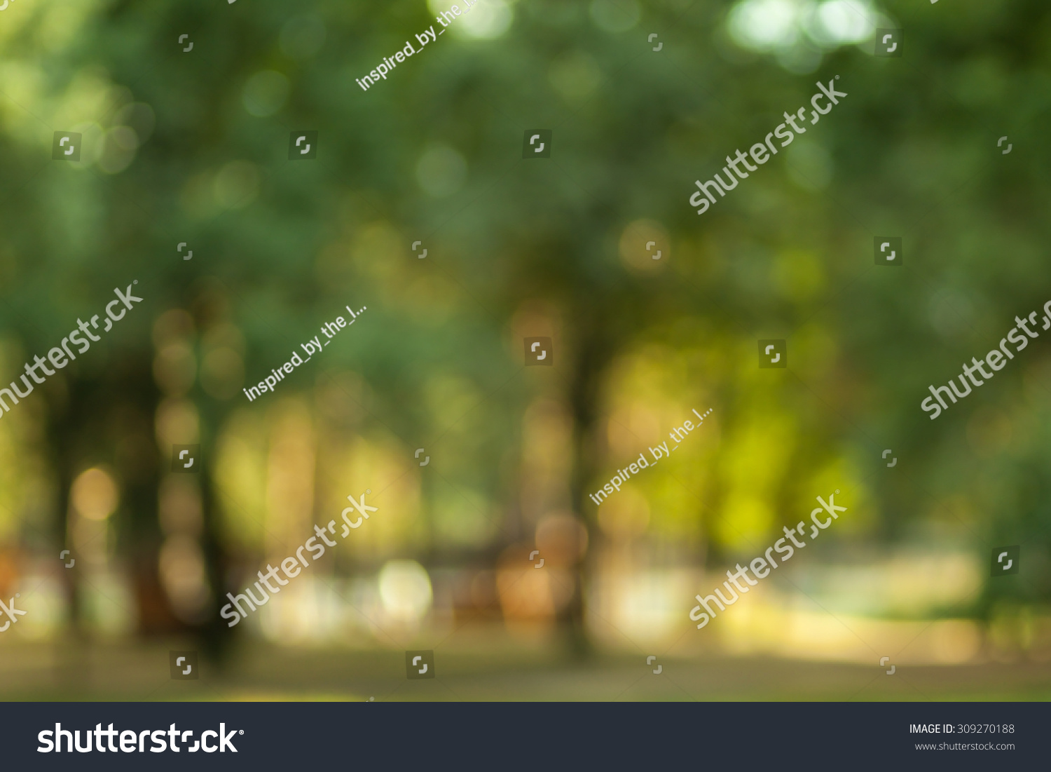 blurry nature wallpaper forest bokeh background stock photo & image