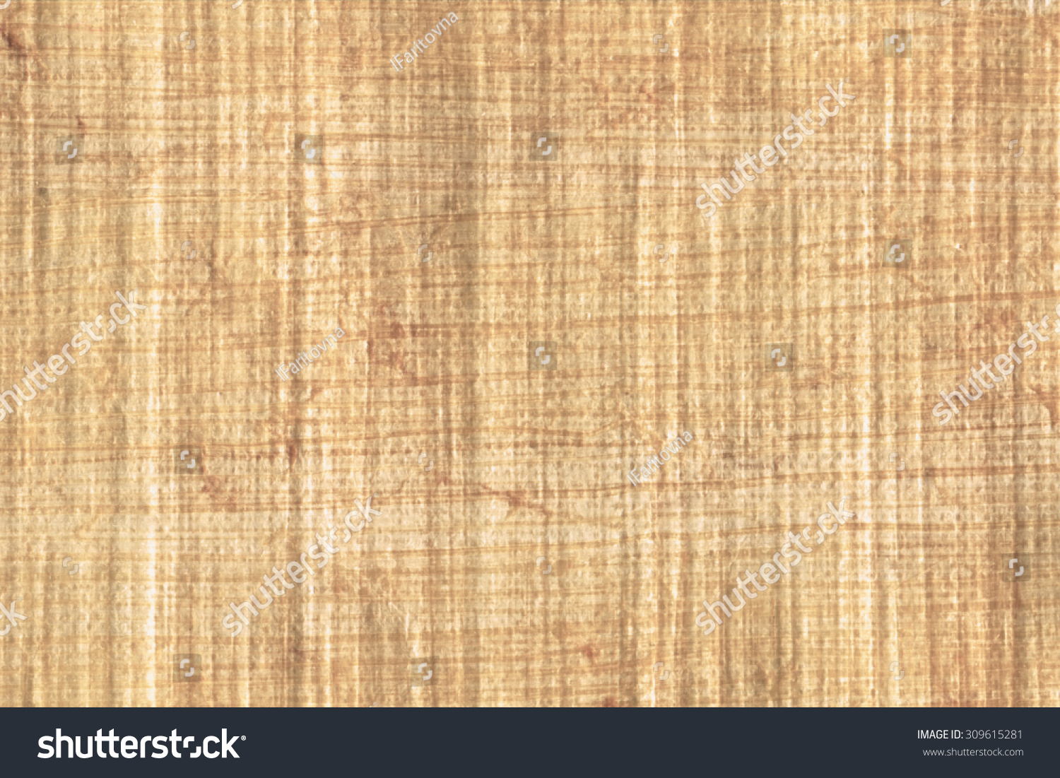 Texture Of Papyrus Paper To Use As A Background. Stock Photo 309615281 : Shutterstock