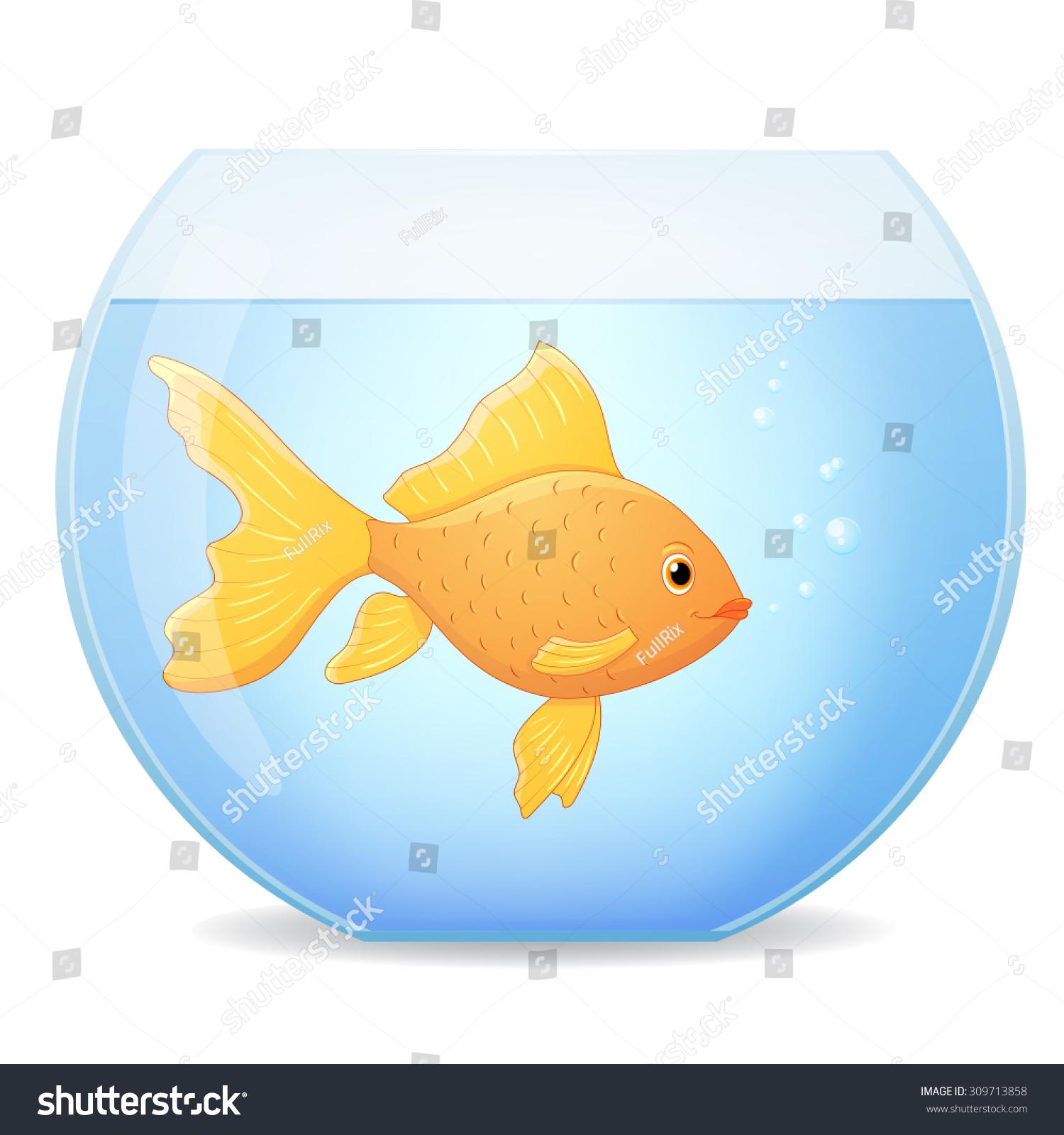 goldfish  Tumblr