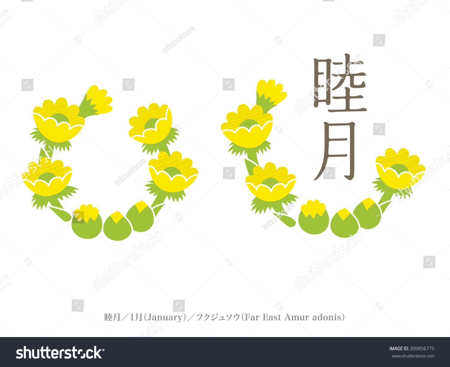 Birth month flower name month japan stock vector 309856775 birth month flower and name of month japan style chinese character means january biocorpaavc
