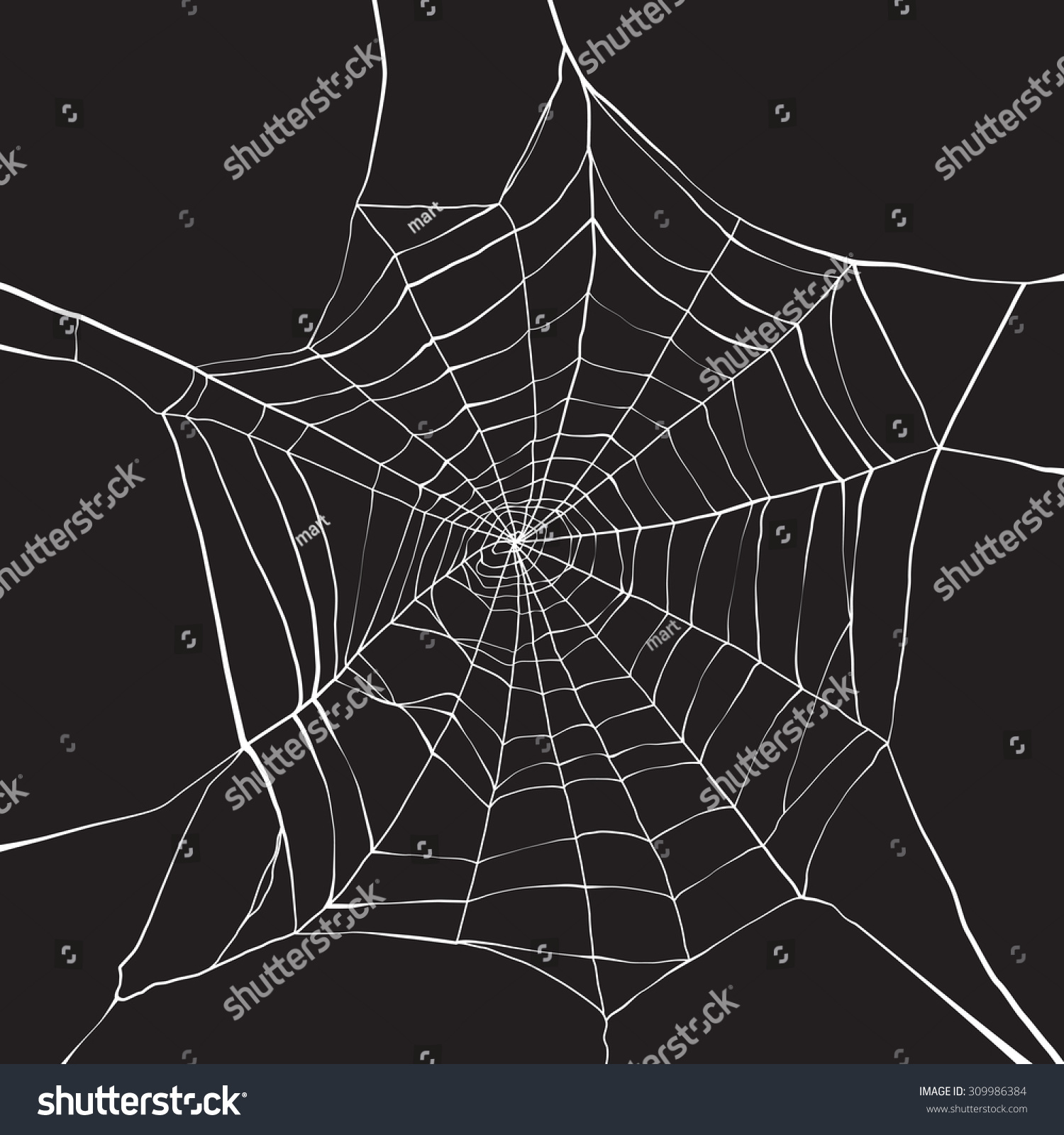 Spider web background corner
