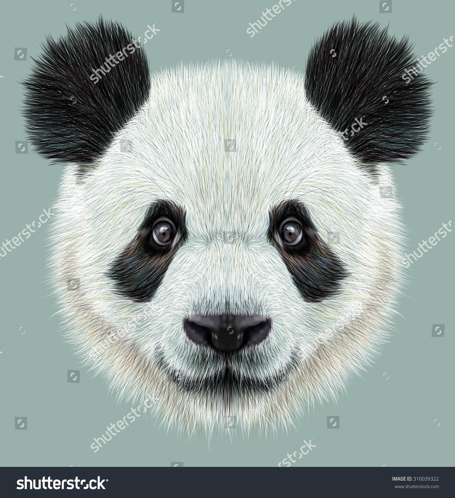 Illustrative portrait of Panda.Cute attractive face bears