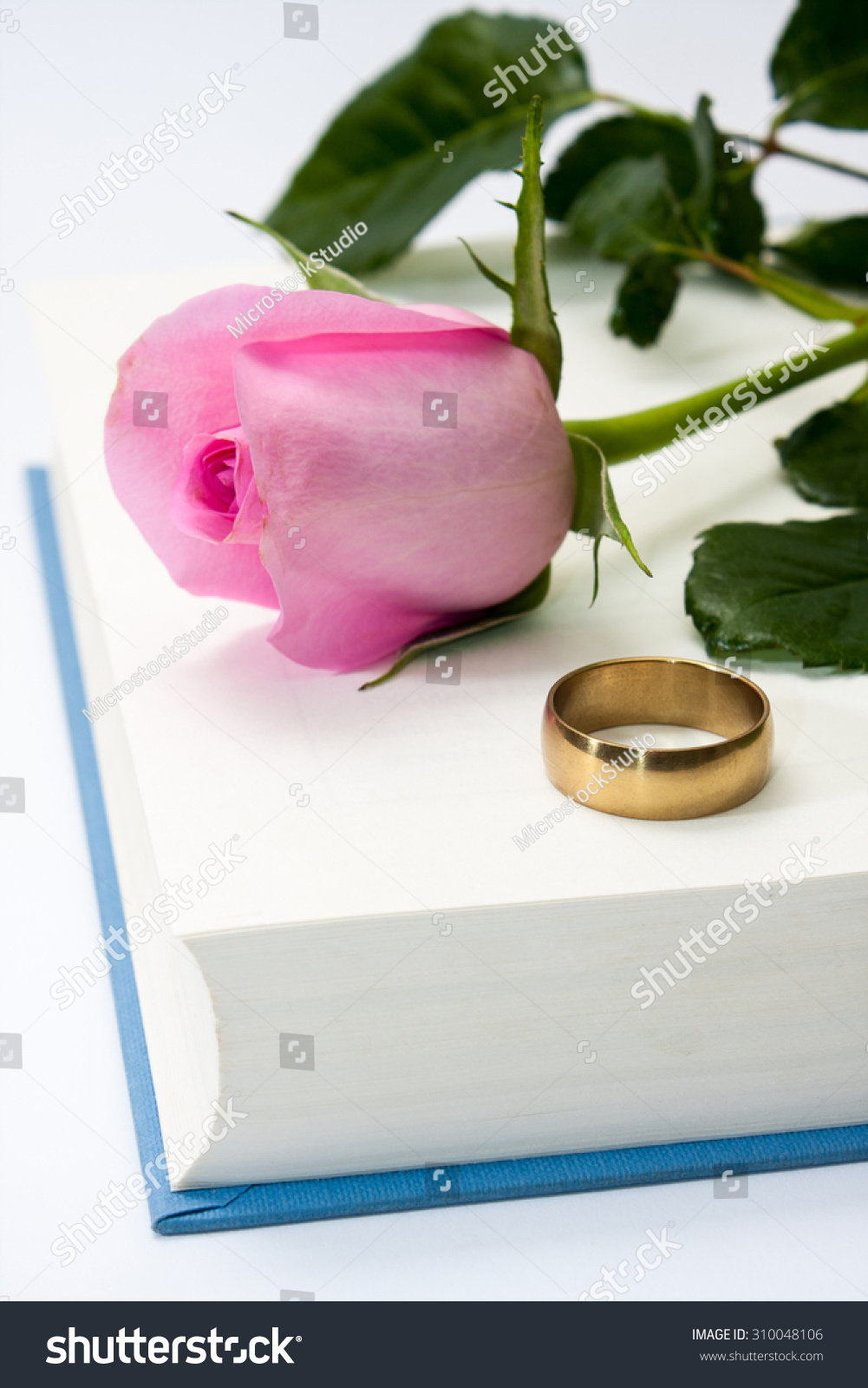 Pink Rose Wedding Ring On Opened Stock Photo (Royalty Free ...