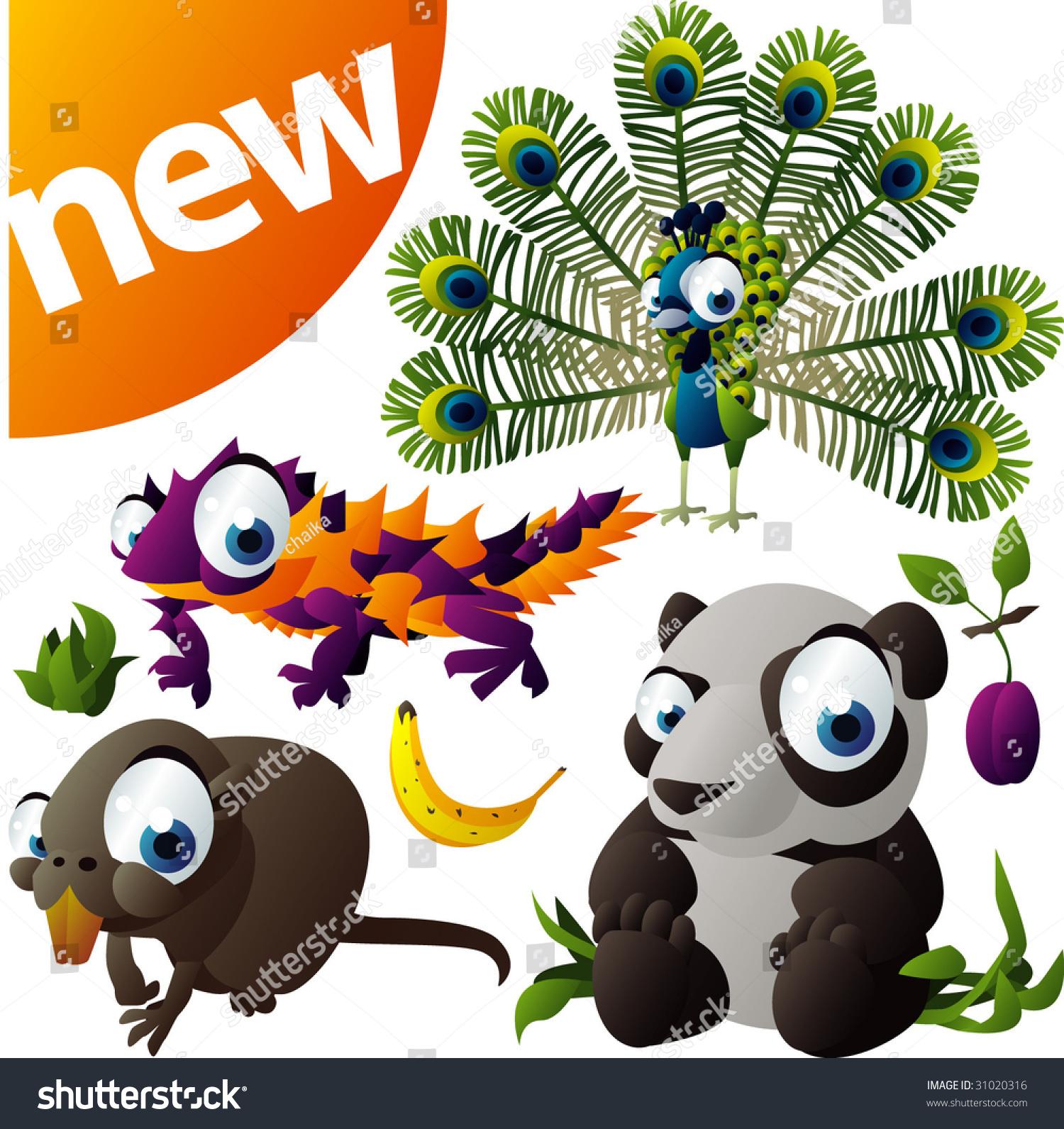 vector Birds of the World  Illustrations  Creative Market