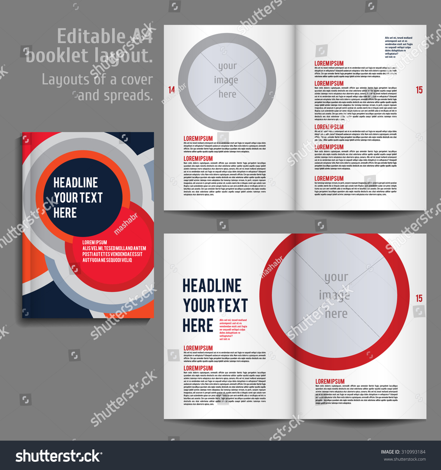 A4 Booklet Layout Design Template Cover Stock Vector