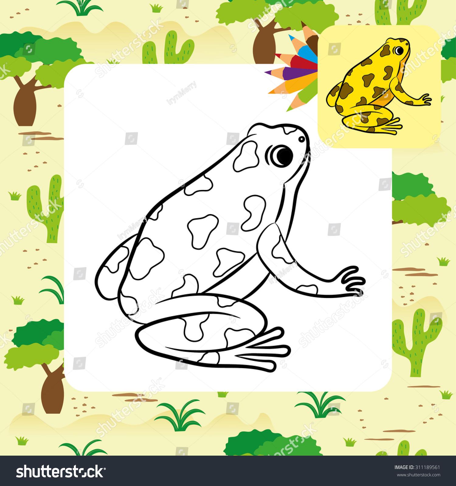 cartoon poisondart frog coloring page vector stock vector