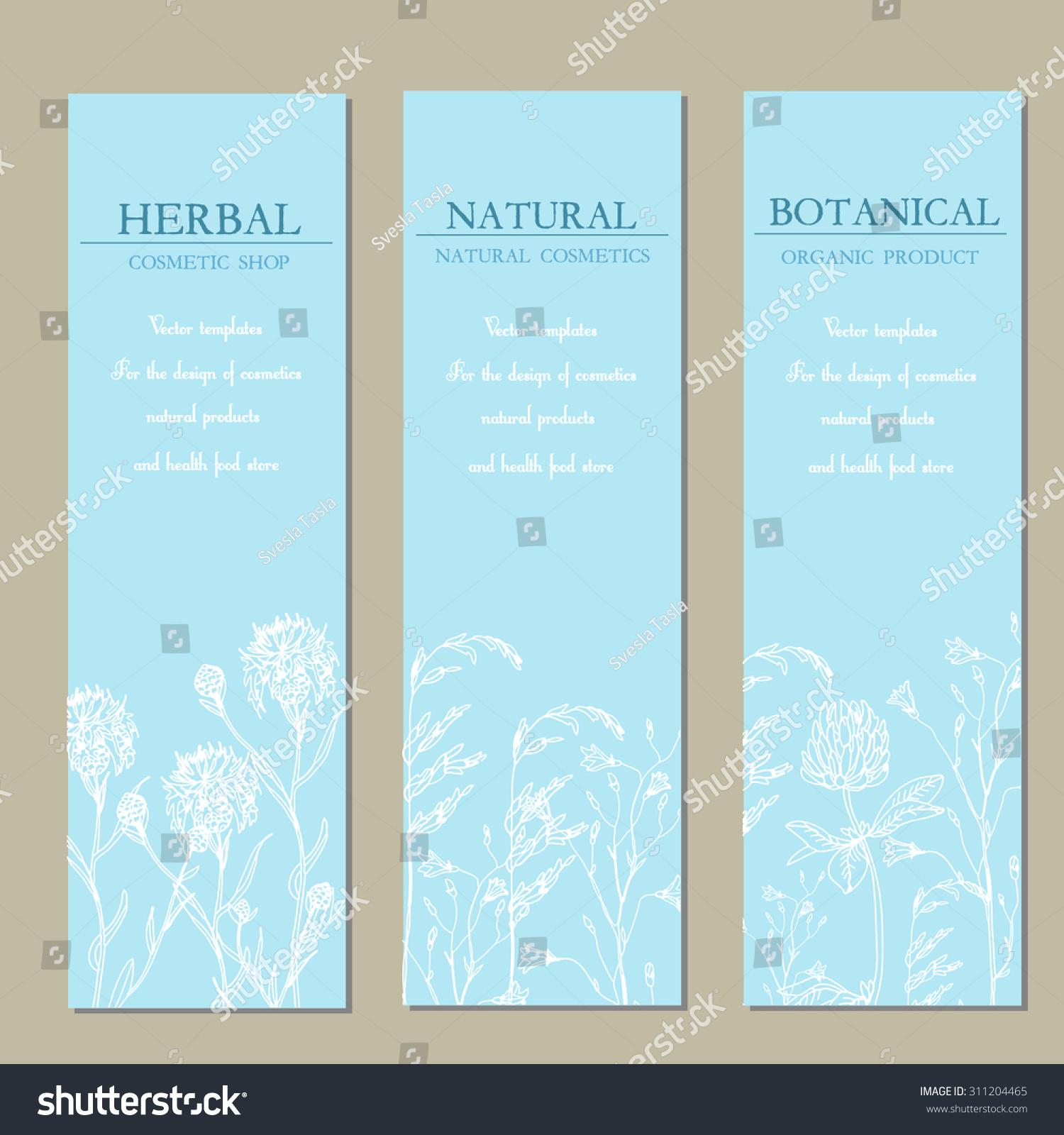 Vector Template Labels Handdraw Wild Flowers Stock Vector 311204465 ...