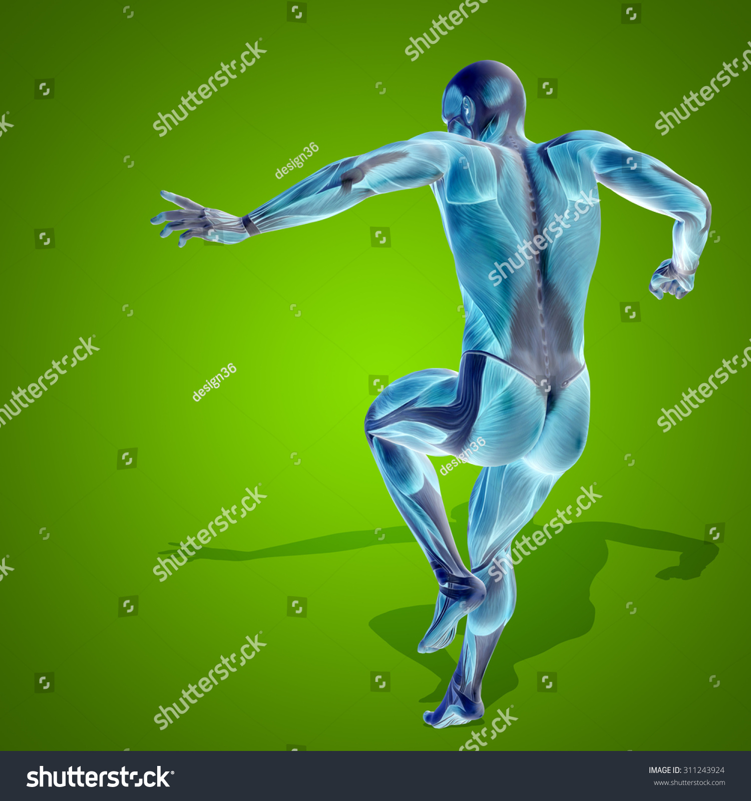 Fitness Biology: Conceptual Strong Human Man 3d Anatomy Stock Illustration