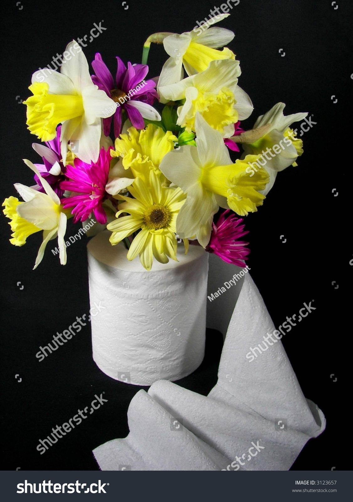 Daffodil Daisy Bouquet Toilet Paper Roll Stock Photo Royalty Free