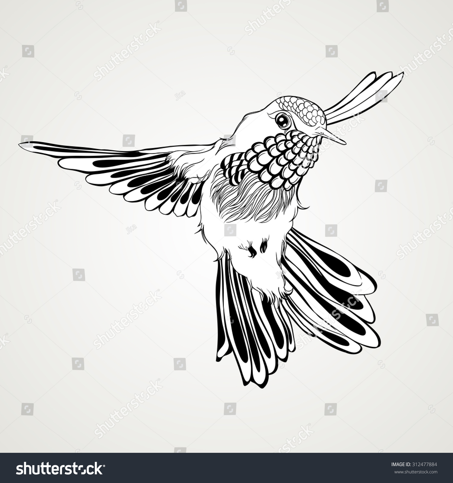 Flying bird illustration vintage - photo#21