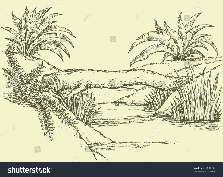 Small Rivulet - Perizoma alchemillata | NatureSpot