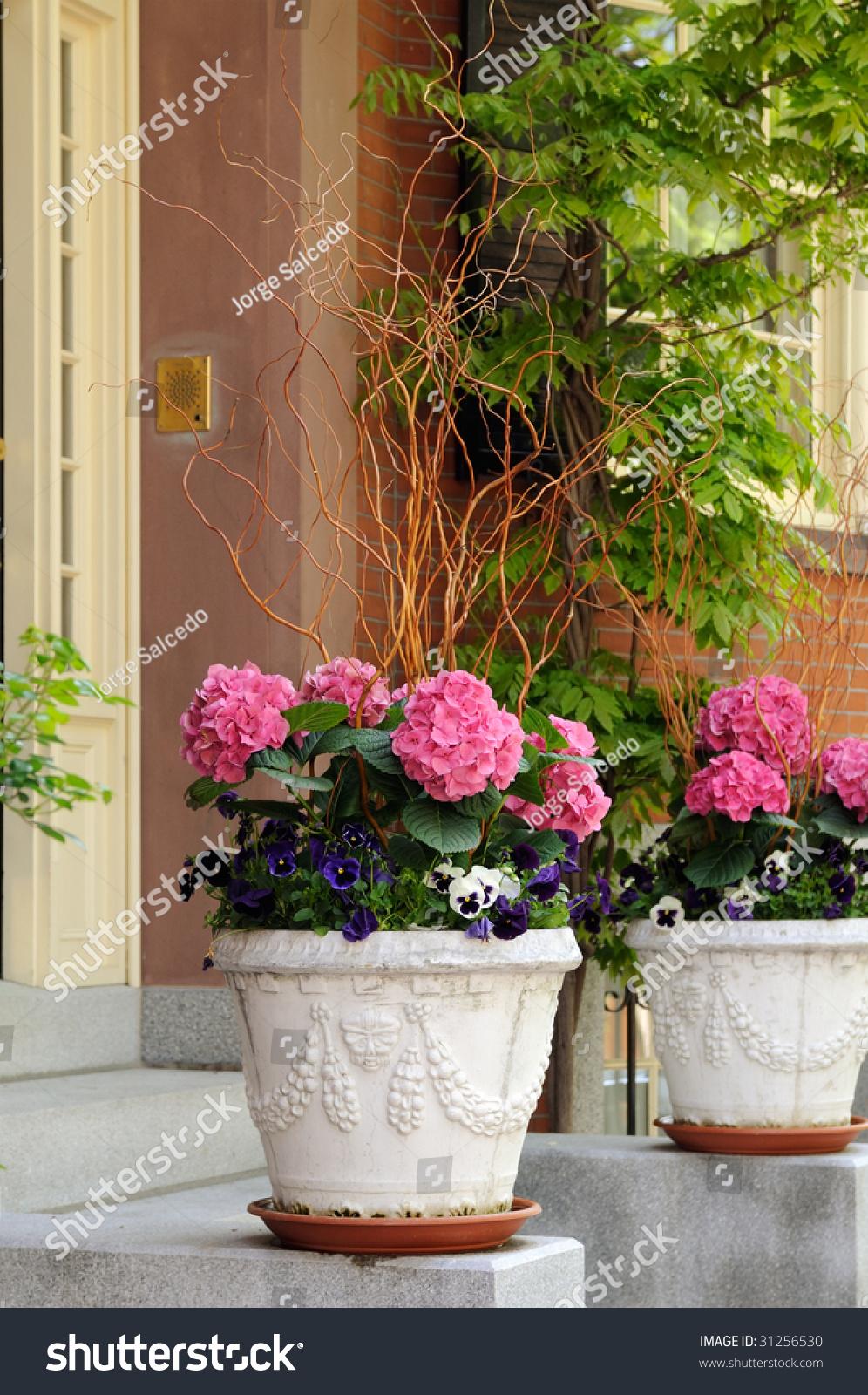 Elegant Flower Pots Pink Hidrangea Pansies Stock Photo