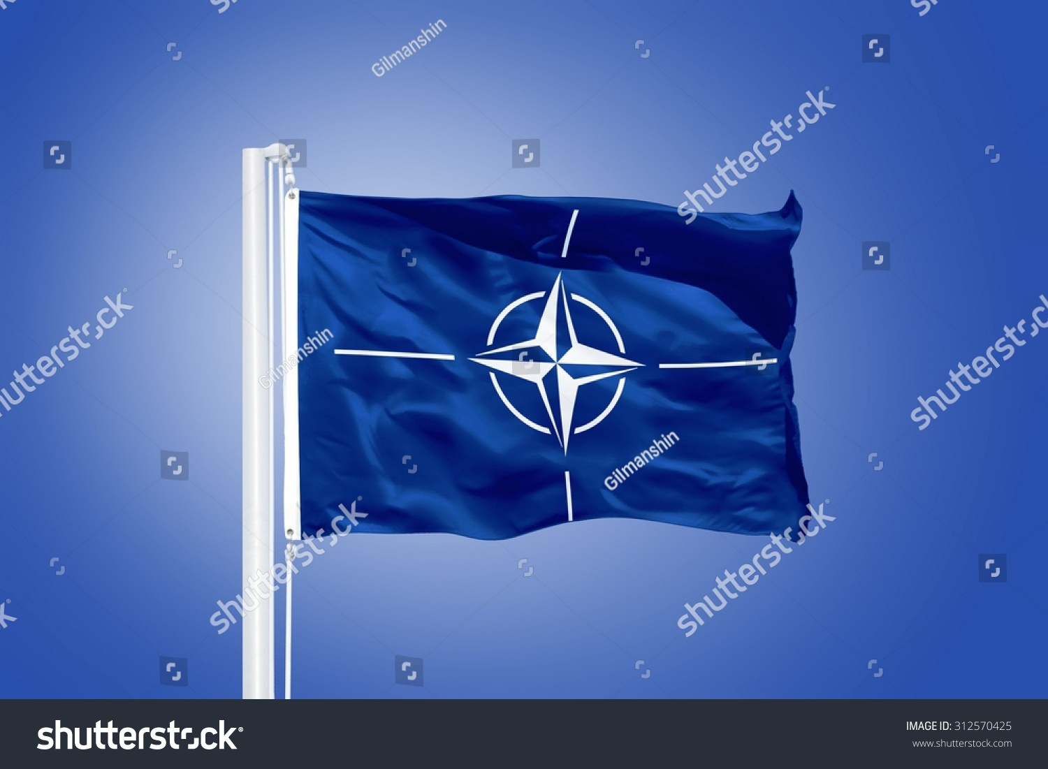 an analysis of the north atlantic treaty organization nato Offers a prospective analysis of the north atlantic treaty organization and the anticipated security consequences of climate change.