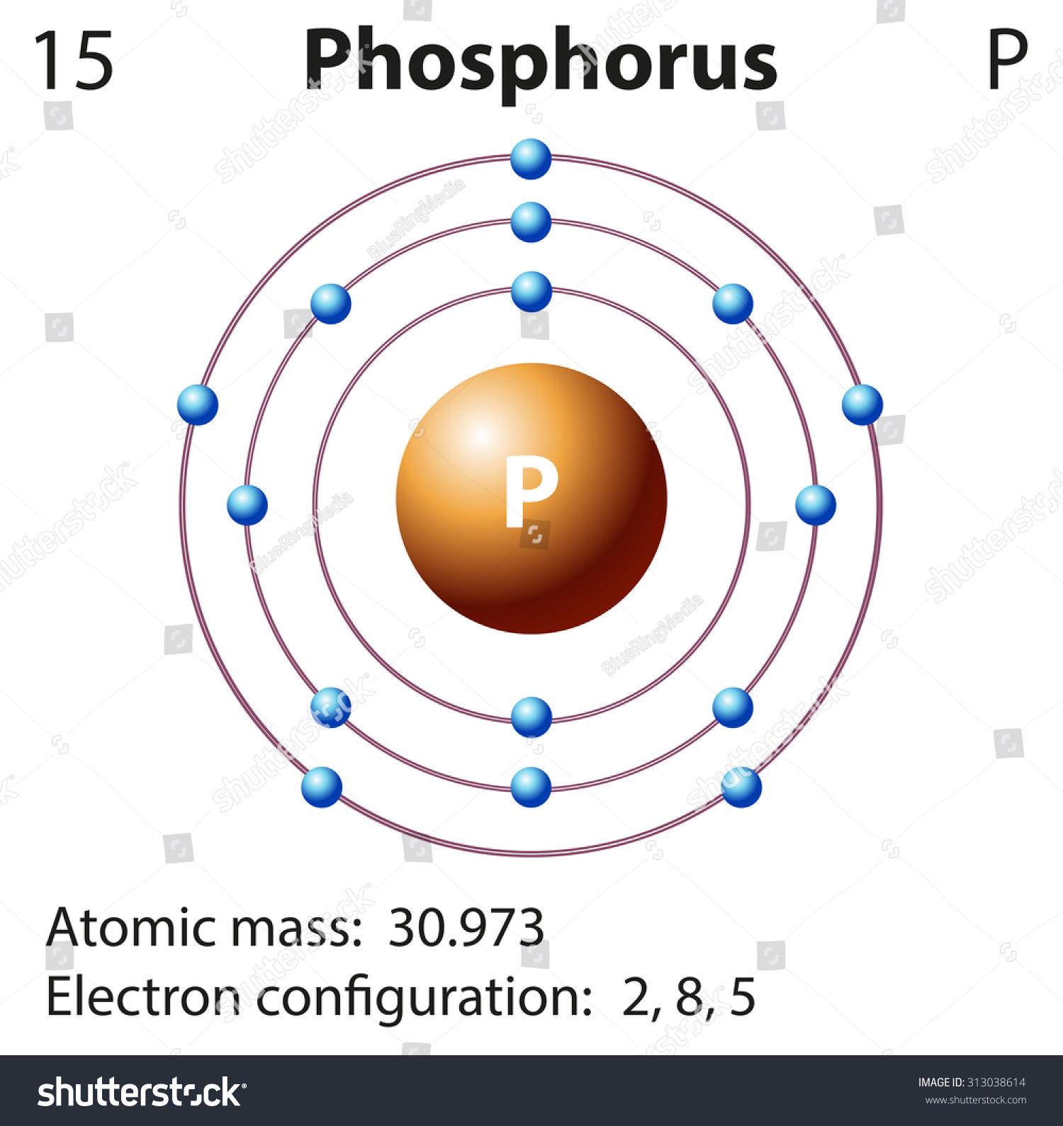 Diagram representation element phosphorus illustration stock diagram representation of the element phosphorus illustration pooptronica