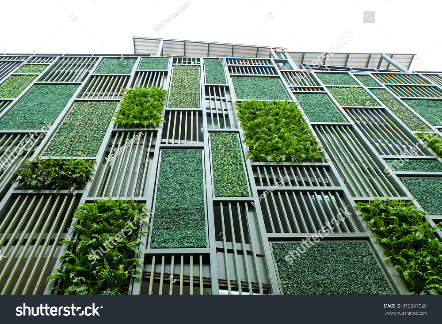 Green facade vertical garden in architecture ecological Building facade pictures