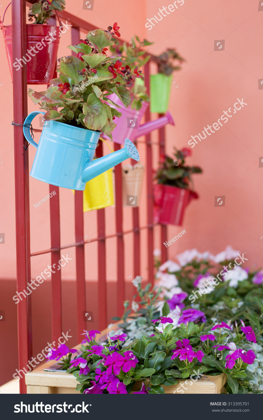 Beautiful Colorful Idea Small Flower Pots Stock Photo Edit Now