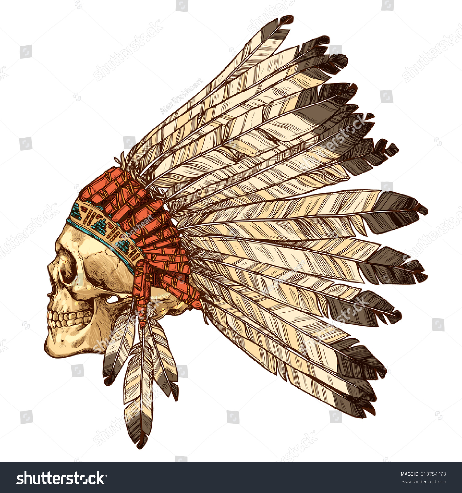 dd32fba3da006 Hand Drawn Native American Indian Headdress With Human Skull In Profile.  Vector Color Illustration Of Indian Tribal Chief Feather Hat And Skull Side  View