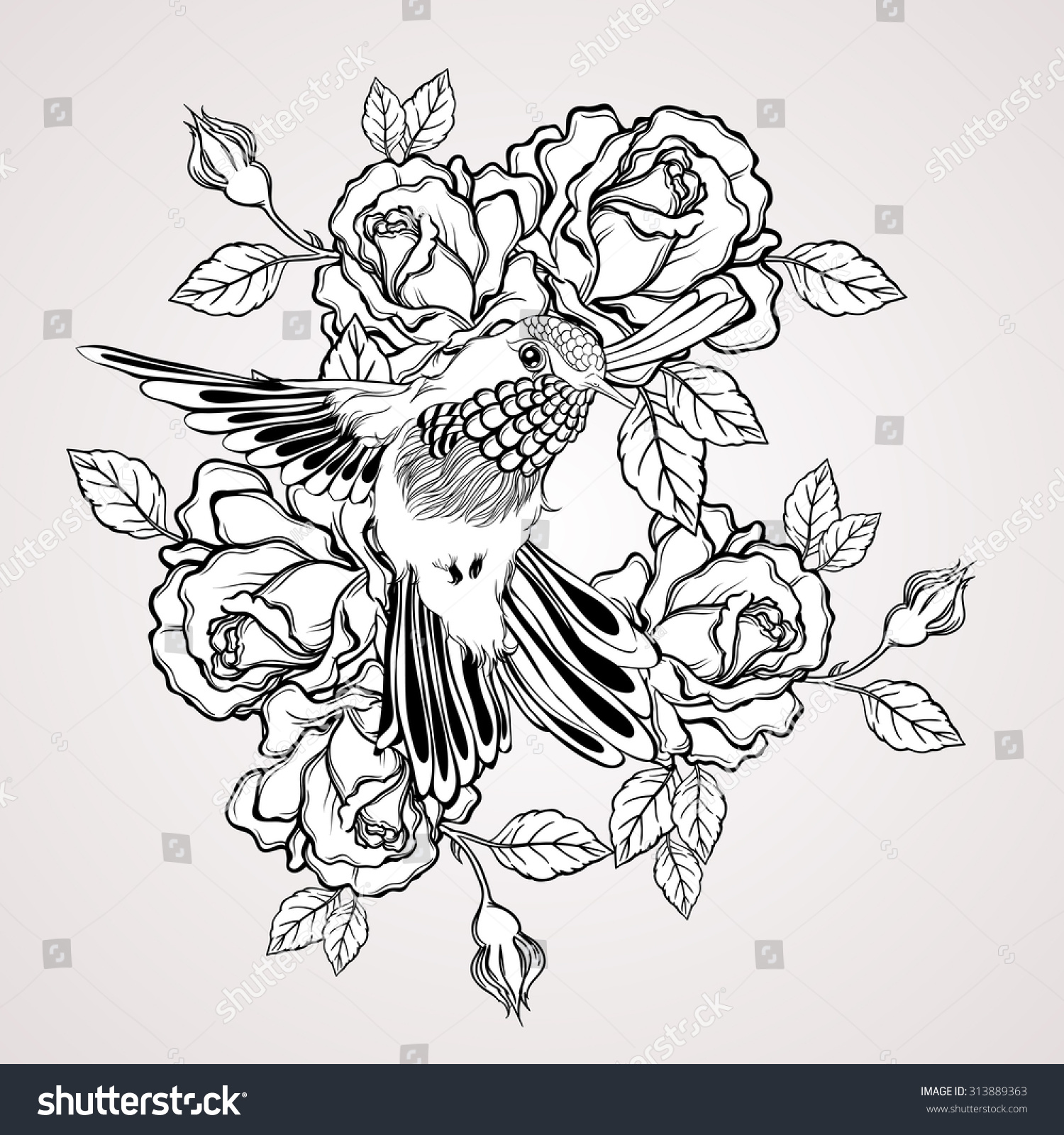 Tato Art Styles: Hand Drawn Flying Humming Bird Rose Stock Illustration
