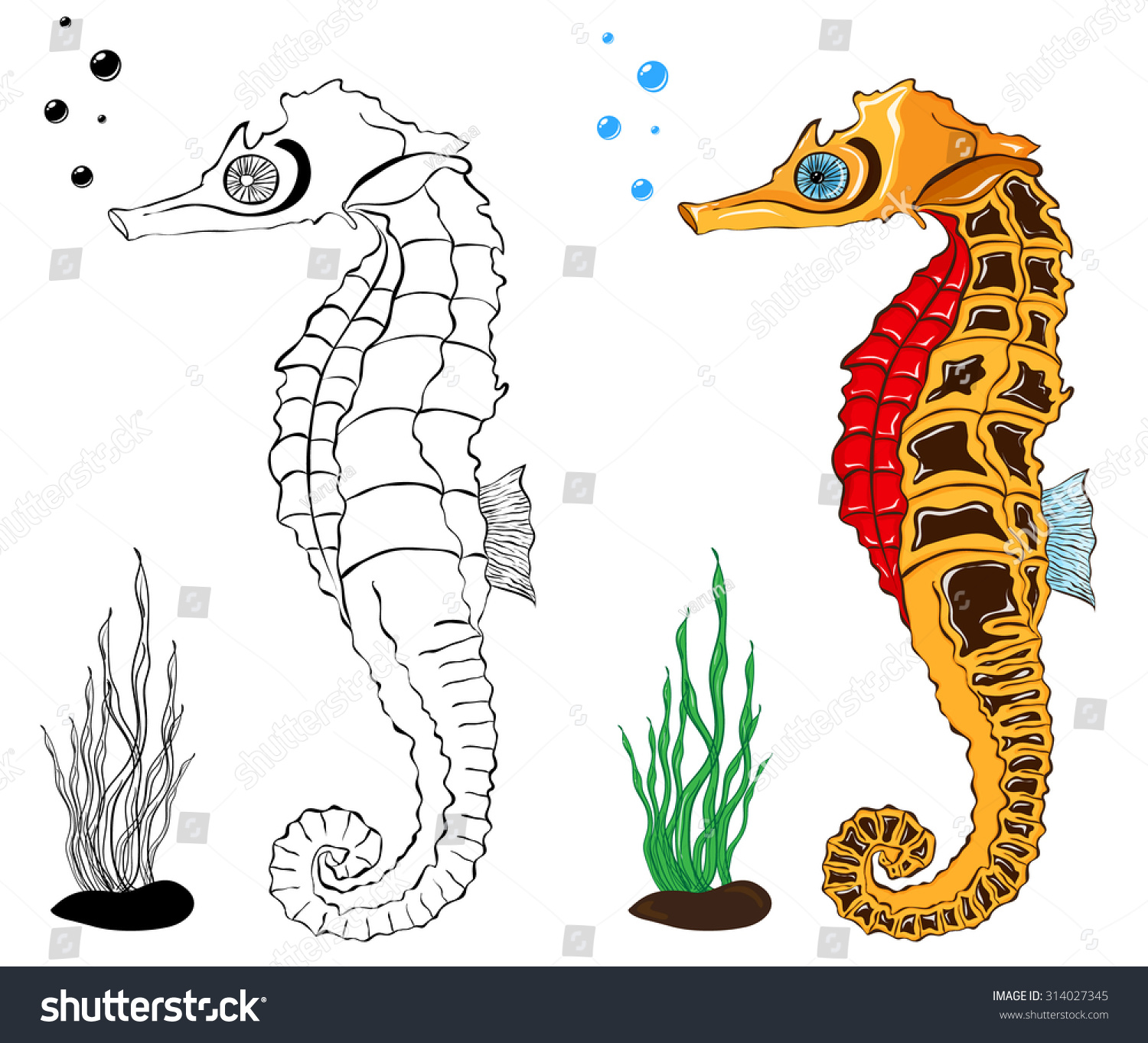 Sea Horse Coloring Pages Stock Vector 314027345 - Shutterstock