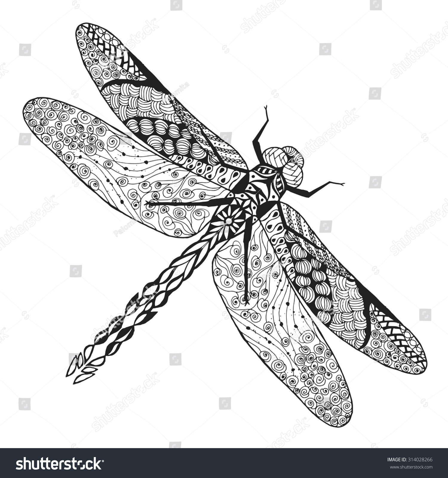 dragonfly animals hand drawn doodle insect stock vector 314028266