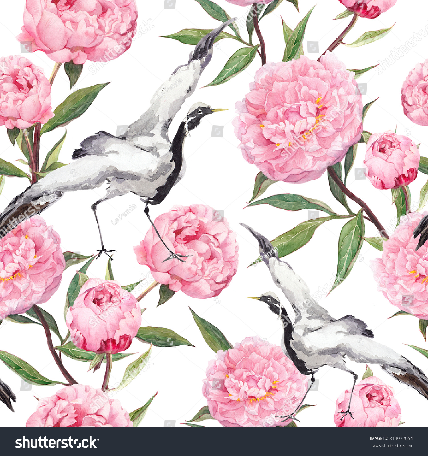 Peony flower isolated on white stock vector 368014568 shutterstock - Crane Birds Dance In Pink Peony Flowers Floral Repeating 1500x1600 Peony Seamless Pattern Stock Vector Colourbox 800x800