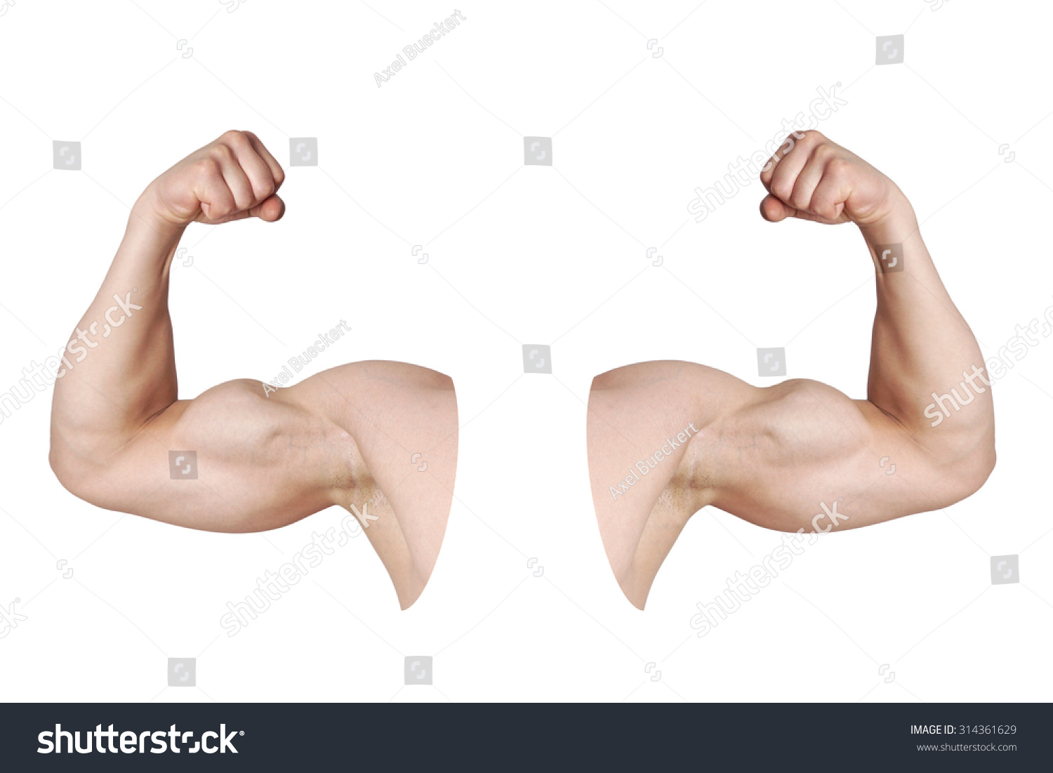 cut out male arms flexed biceps stock photo 314361629
