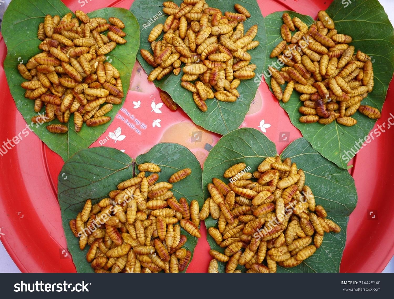 Silkworm , Product From Silk , Thai Culture Food . Stock Photo 314425340 : Shutterstock1500 x 1140 jpeg 719kB
