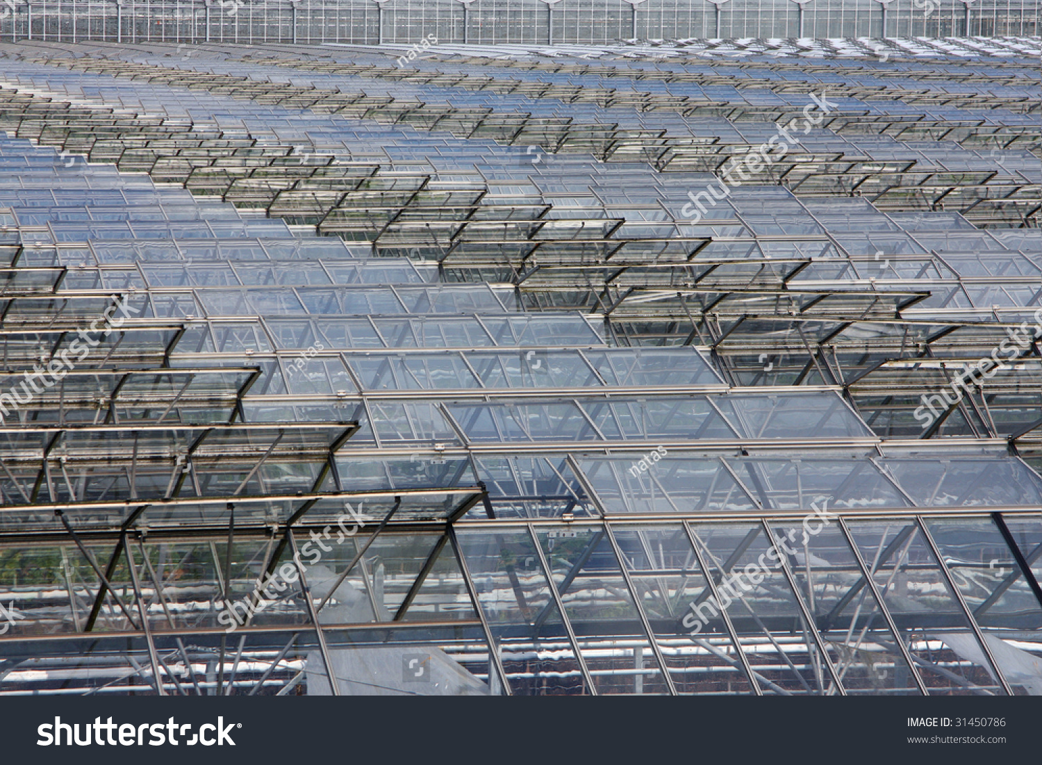 Glass Greenhouse Rooftops Open Windows Let Stock Photo (Edit Now ...