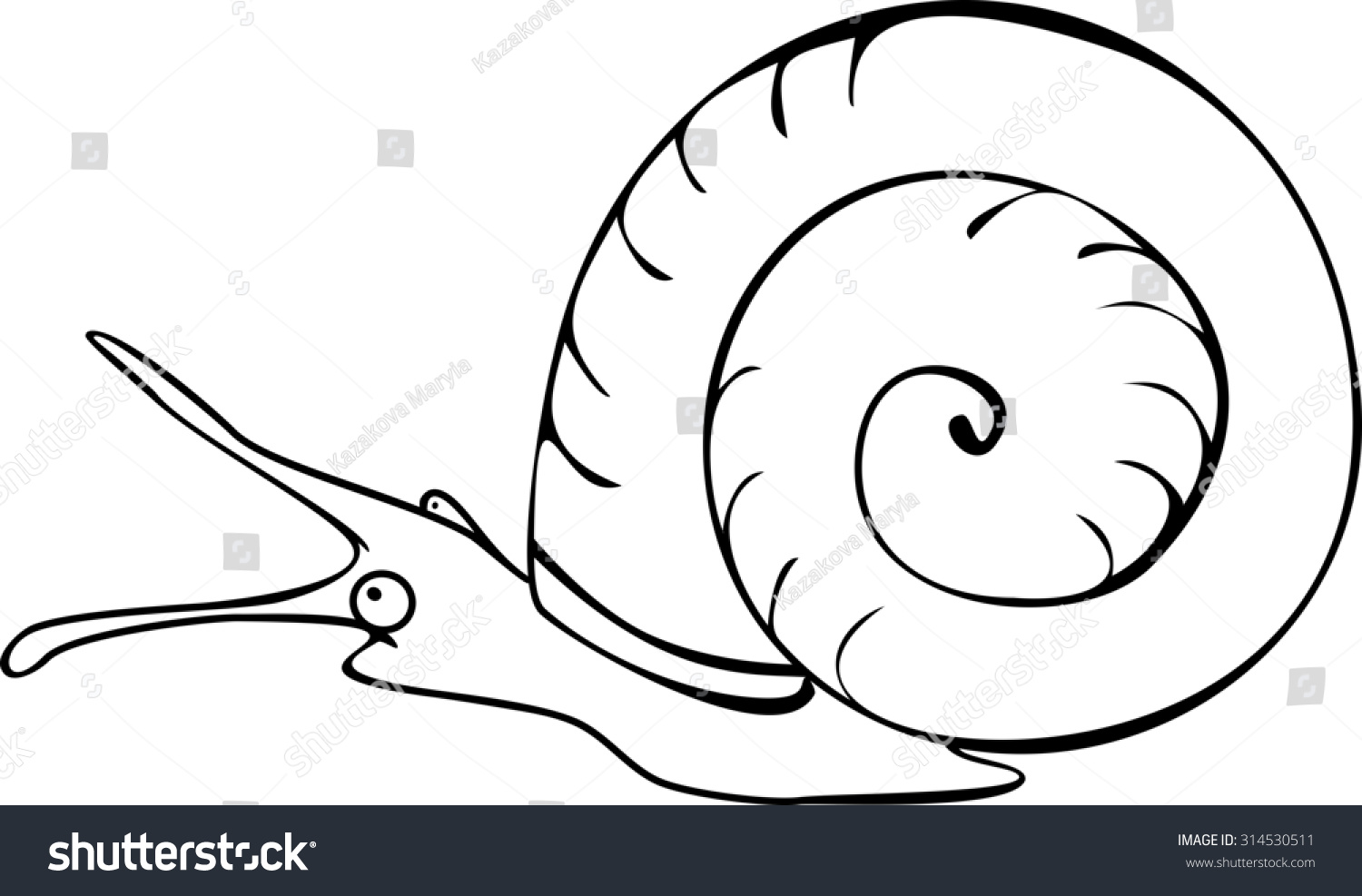 Coloring Page Freshwater Snail Stock Illustration 314530511 ...