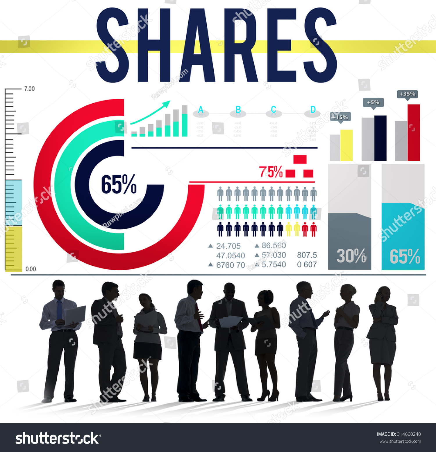 shareholder concept