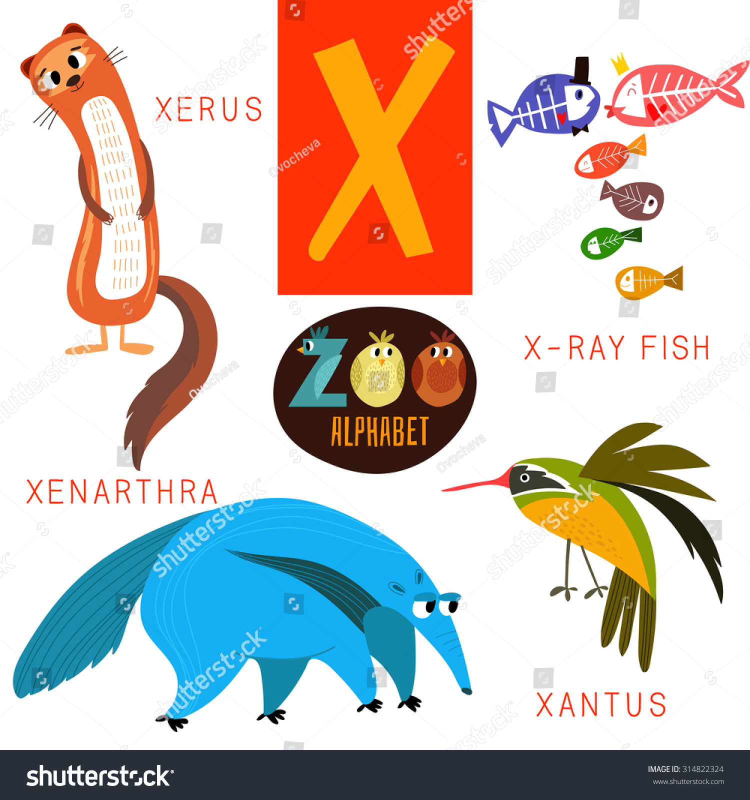 animals that start with the letter x zoo alphabet vectorx letter stock vector 15186