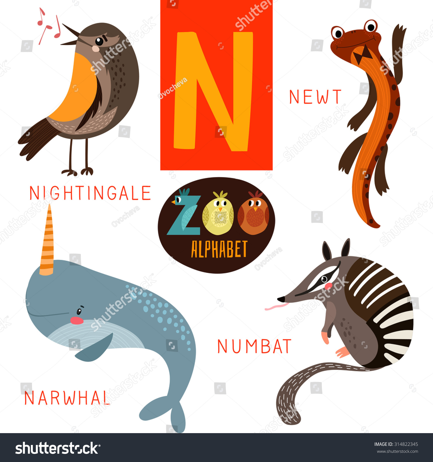 animals that start with n zoo alphabet vectorn letter stock vector 11230