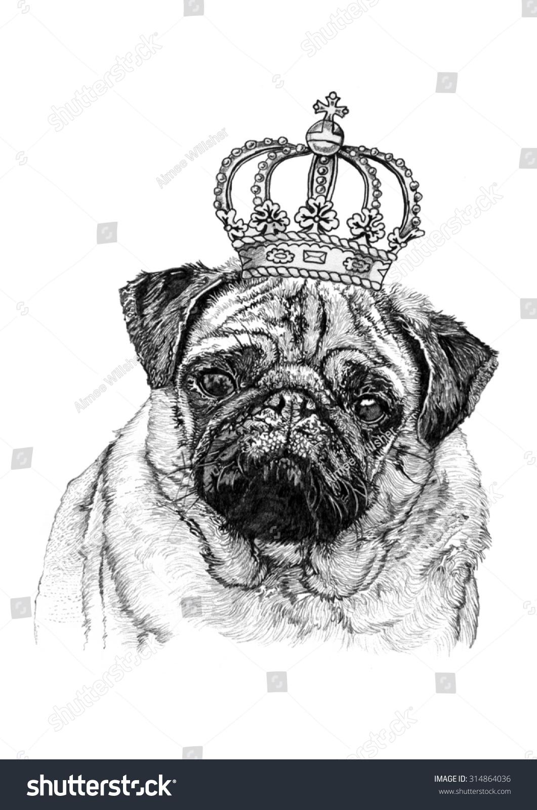 Royal pug face crown pencil drawing stock illustration 314864036