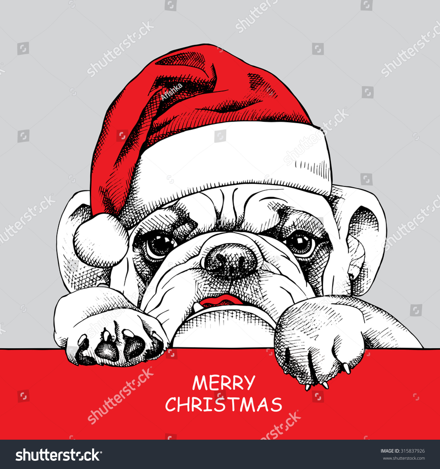 Bulldog portrait in a Santas hat and with a tie. Vector illustration ...