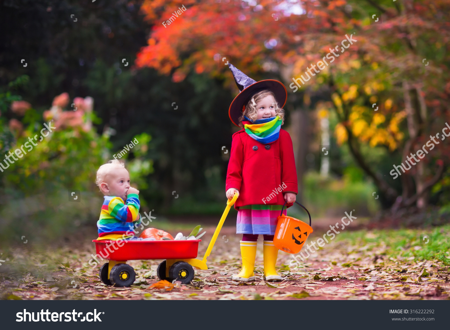 Little Girl Witch Costume Baby Boy Stock Photo 316222292 ...
