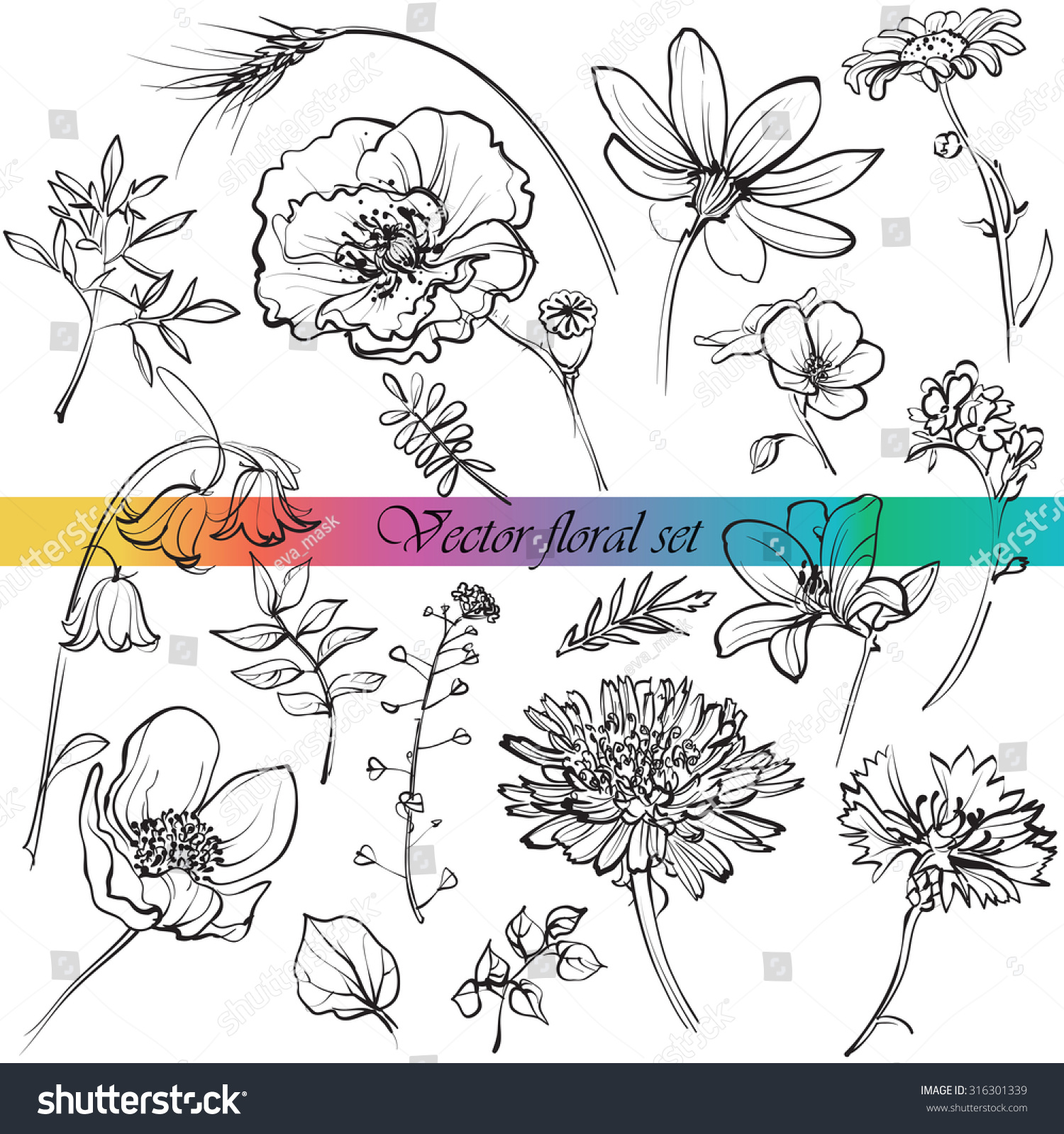 Wildflower Line Drawing : Line drawings of wildflowers grasses and leaves for your