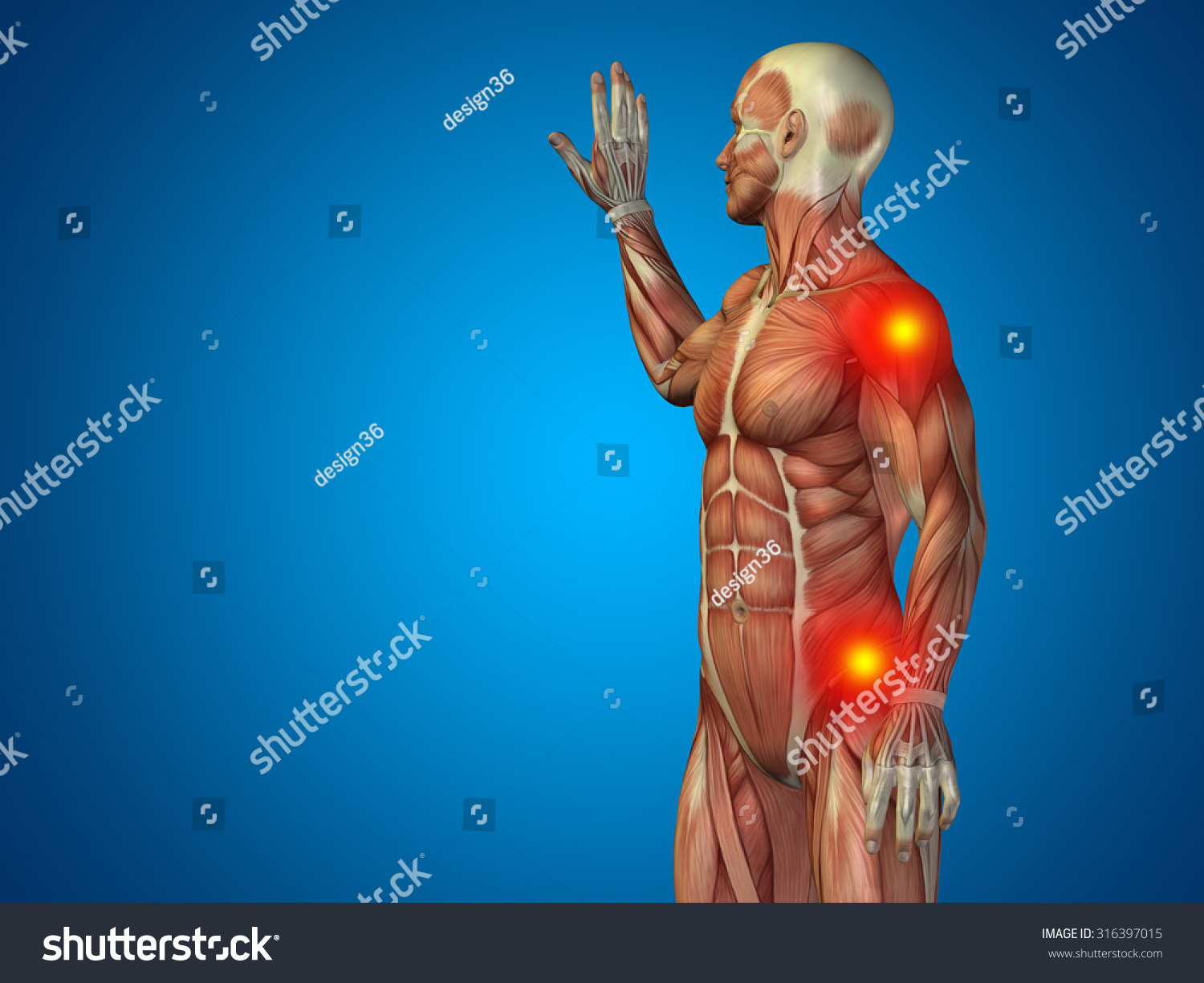 Conceptual 3 D Human Man Anatomy Upper Stock Illustration 316397015