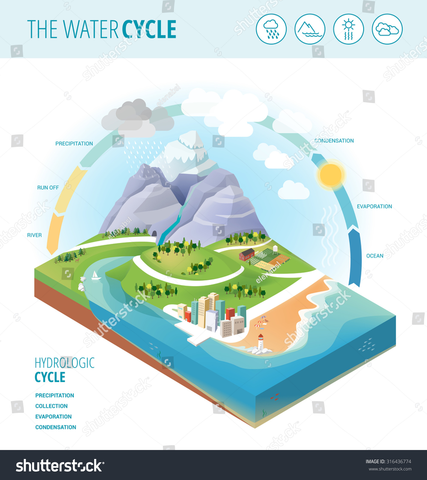 Water Cycle Diagram Showing Precipitation Collection Stock Vector ...