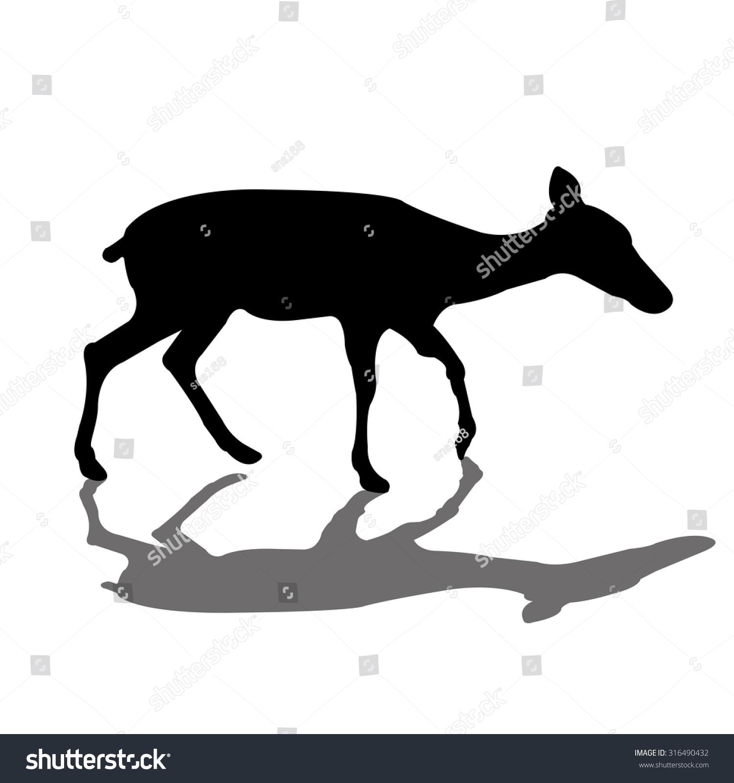 Gazelle head drawing