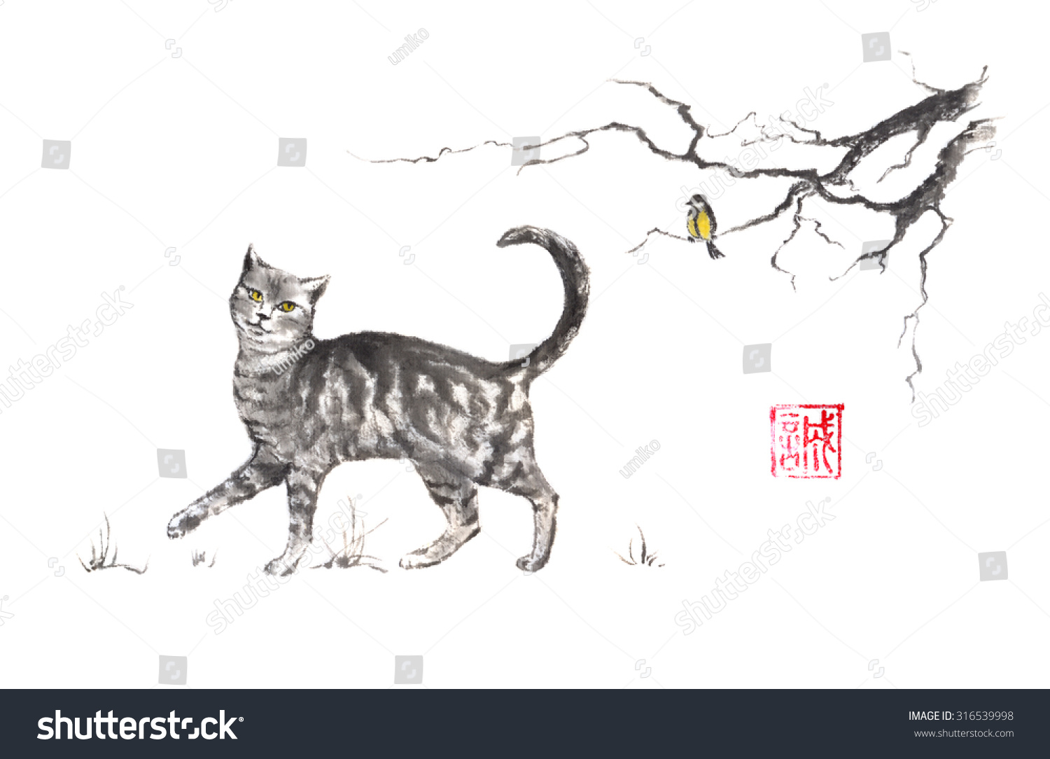 Cat Stock Quote Cat Stock Quote  Best Cat And Kitten Image And Photo Hd 2017