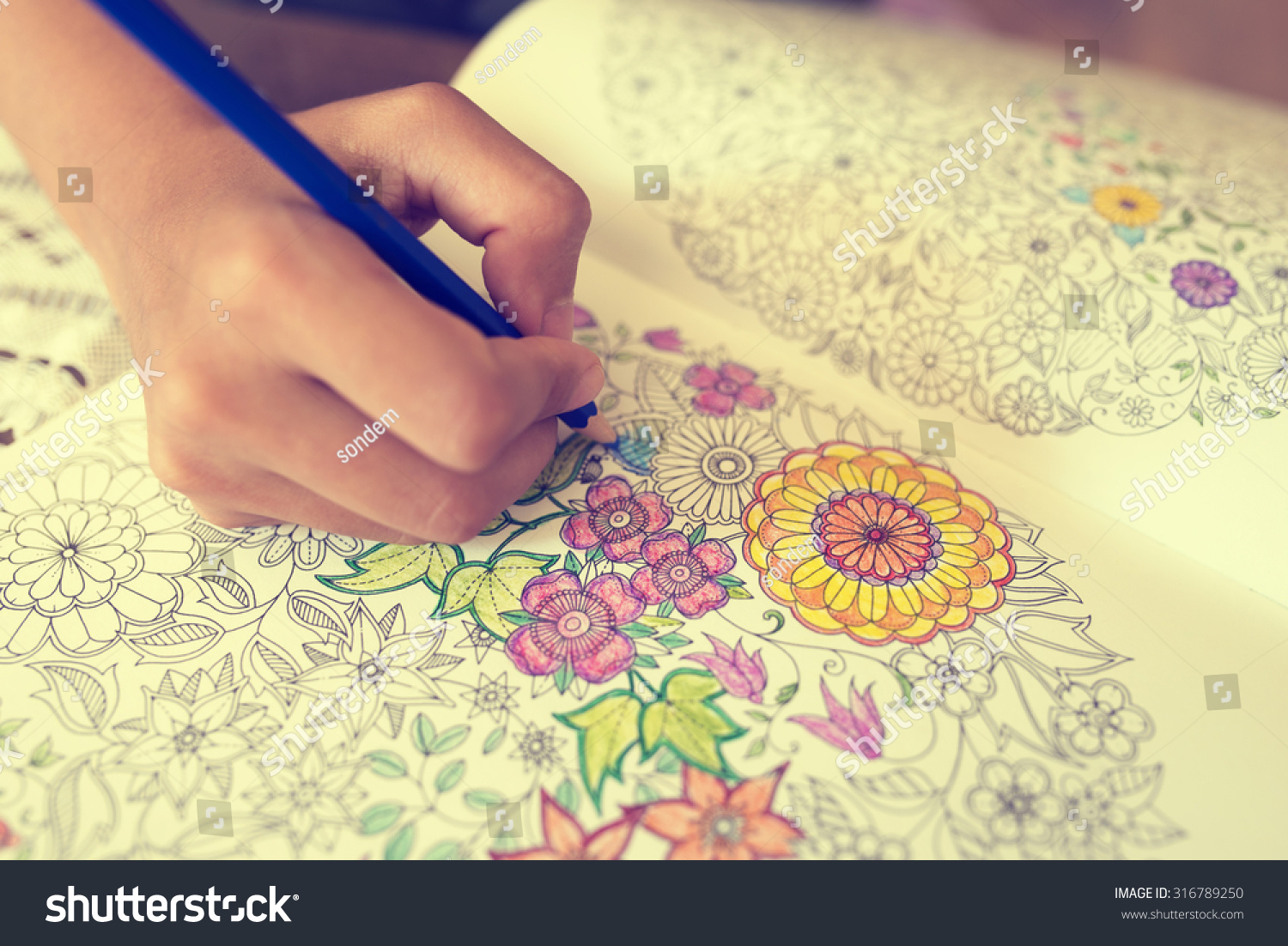 Paint Coloring Book Stock Photo 316789250 - Shutterstock