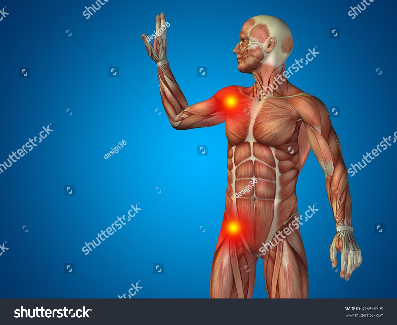Conceptual 3 D Human Man Anatomy Upper Stock Illustration 316835399
