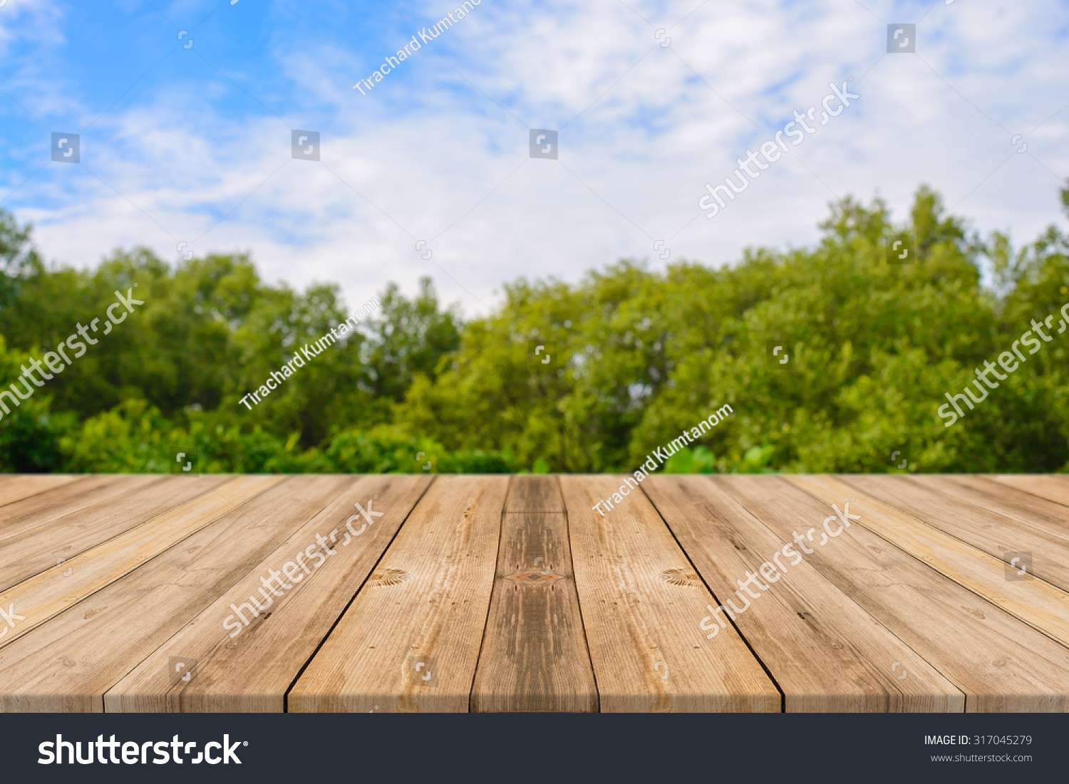 Wood Perspective