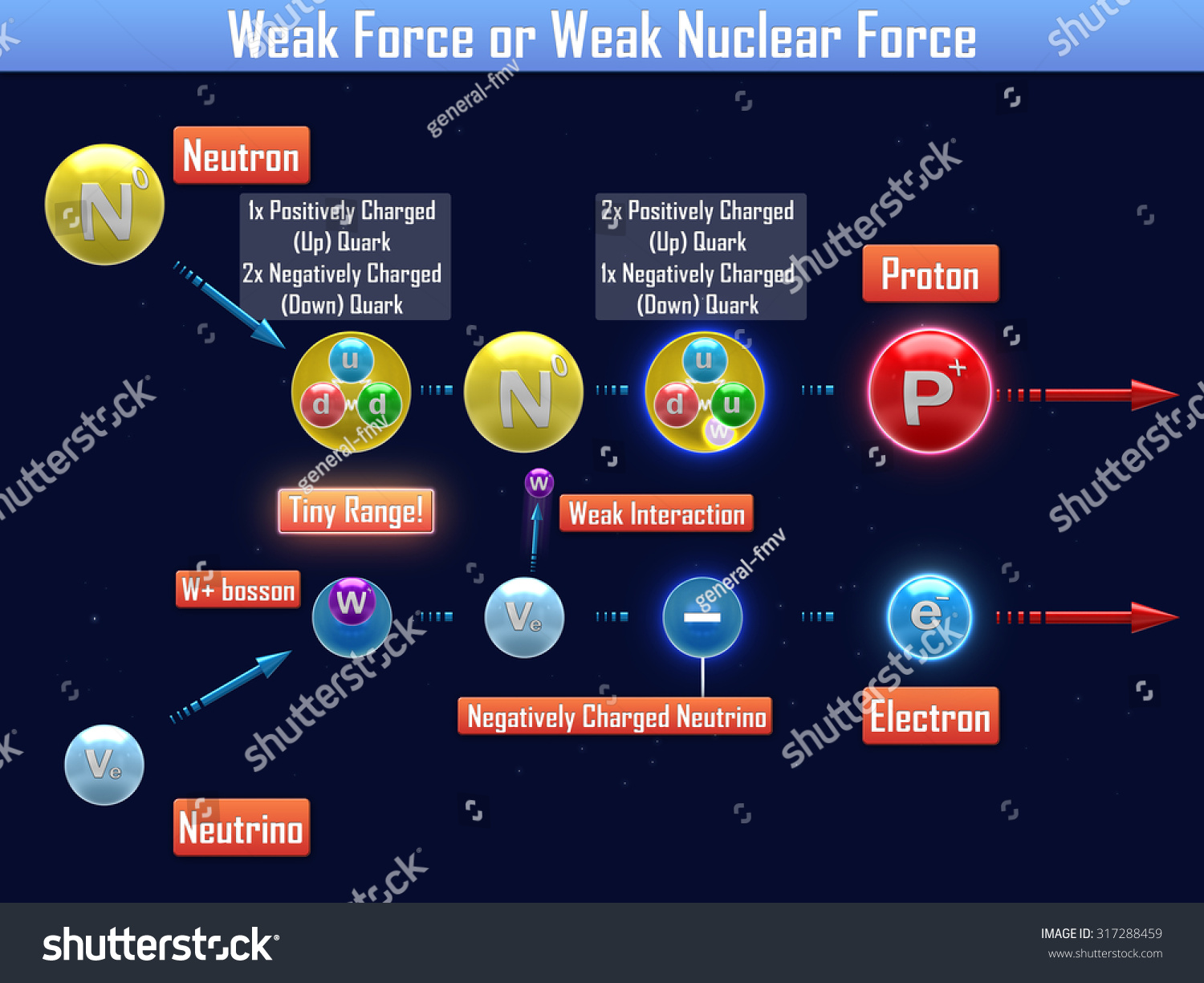 Weak Nuclear Force Clip Art