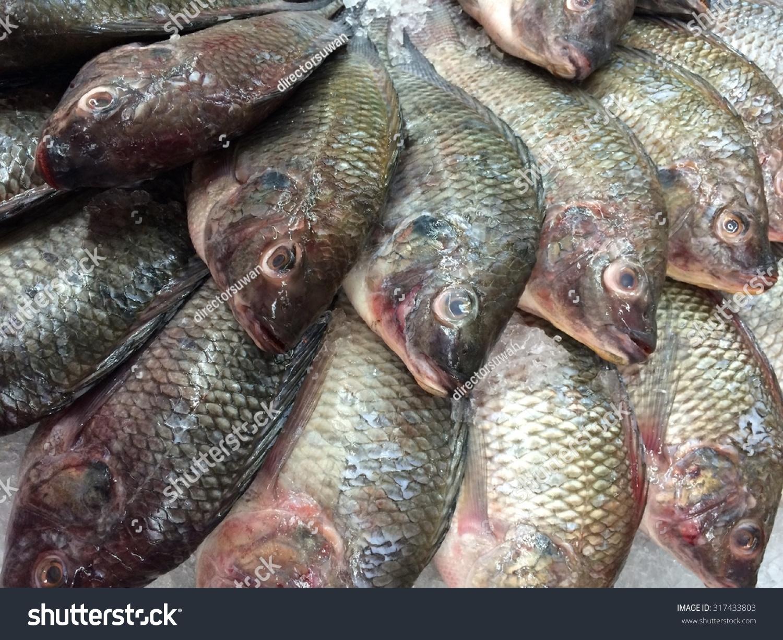 Fresh tilapia fishes fish market thailand stock photo for Fishing for tilapia
