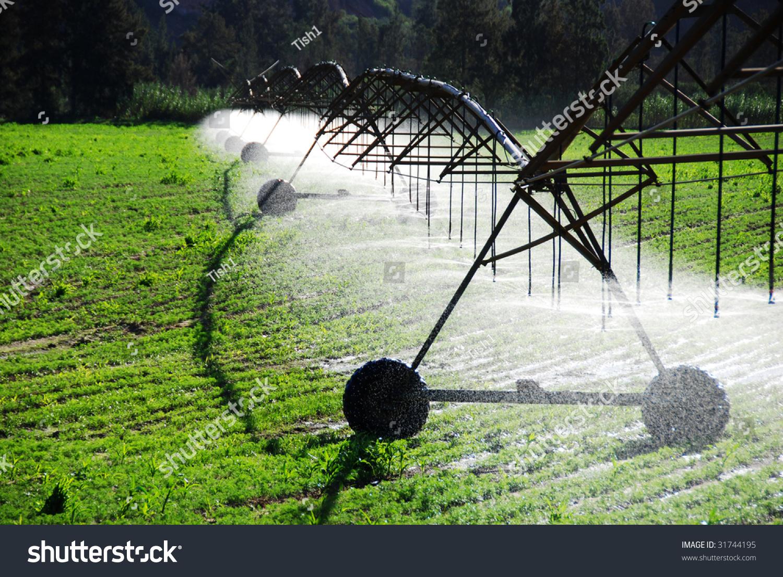 Modern Irrigation System Watering Farm Stock Photo 31744195 ...