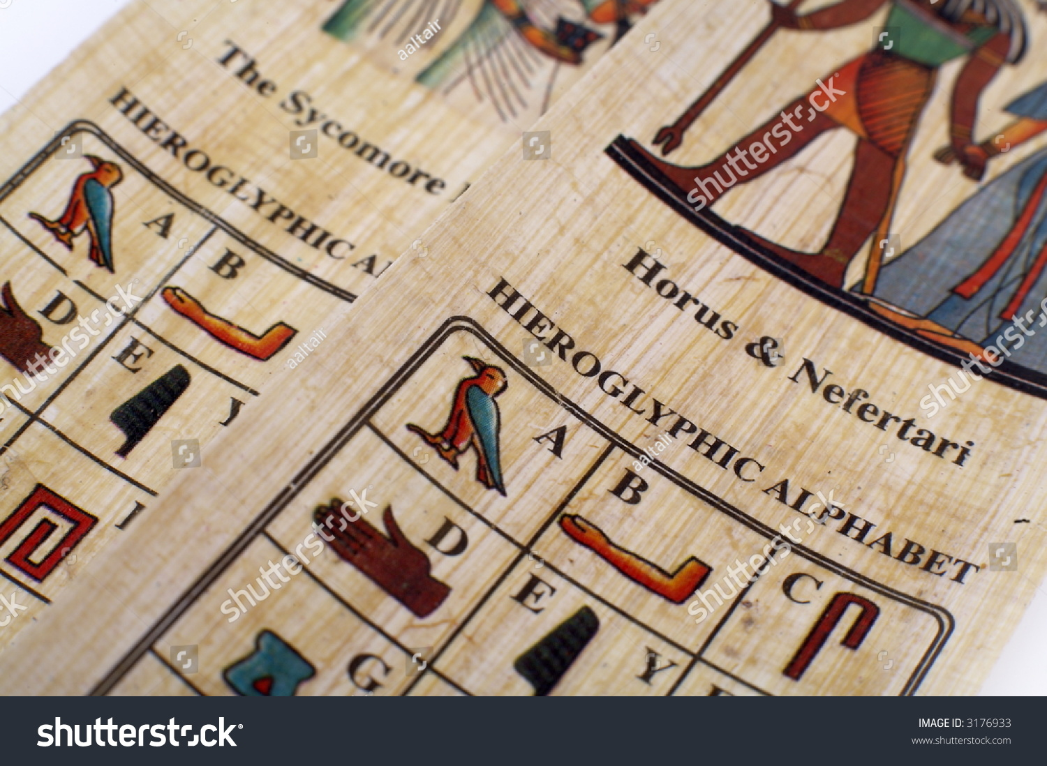 where can i buy papyrus paper The greeks and the romans also used a lot of papyrus, all bought in  instead of making papyrus, egyptian factories started to make paper.