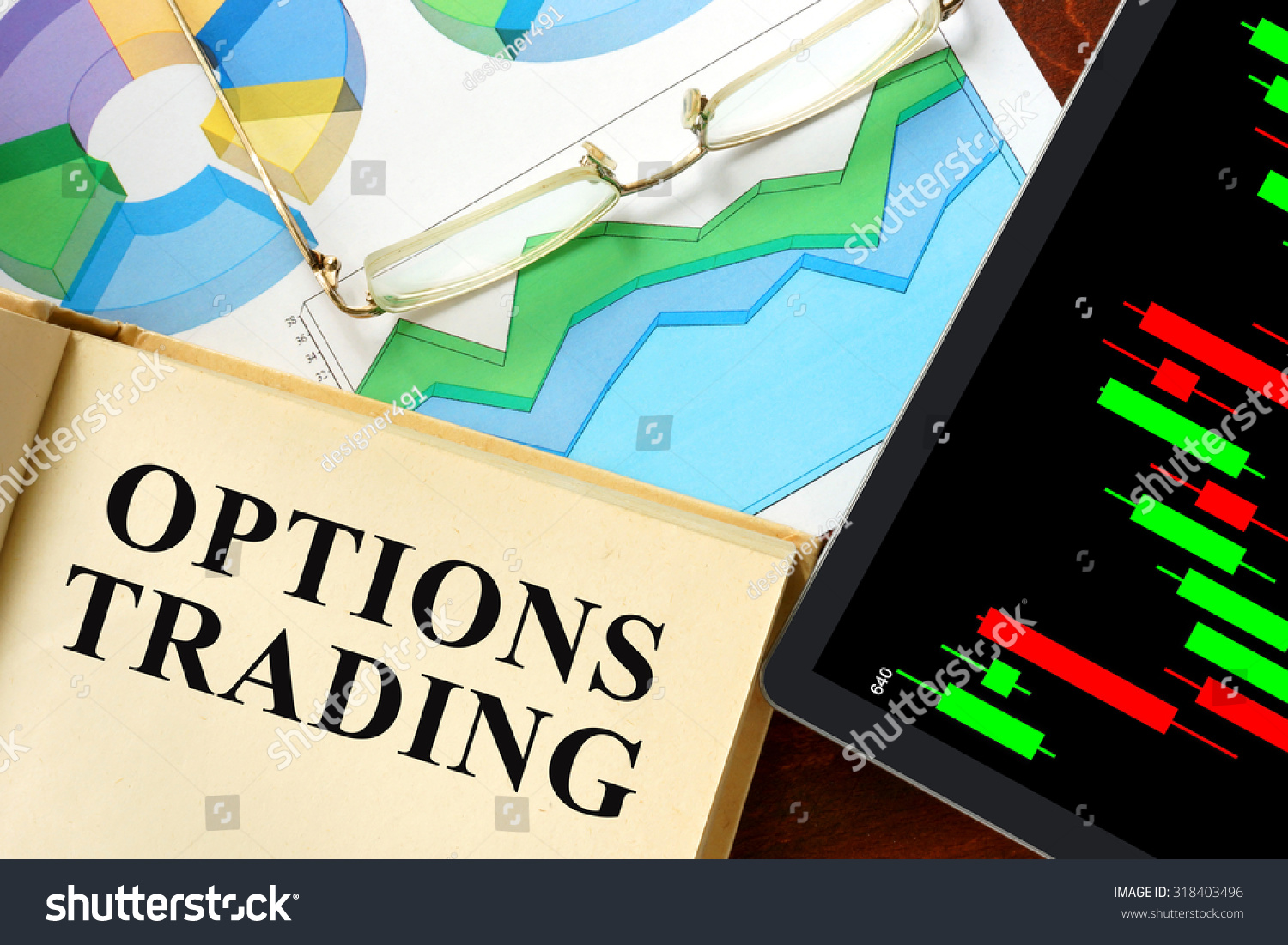 Day trading options book