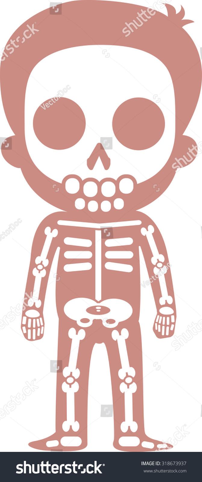 Educational Anatomy Body Organ Chart Kids Stock Vector Royalty Free